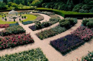Trädgårdsresa till Danmark INSTÄLLD